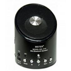 Портативная Bluetooth колонка с FM-радио WSTER WS-Q10 Black (WS-10B)